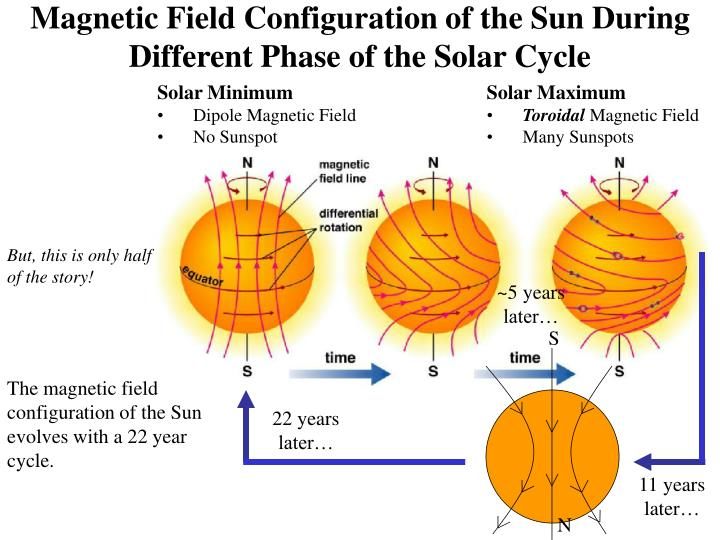 Magnetic Field Configuration of the Sun During Different Phase of the Solar Cycle