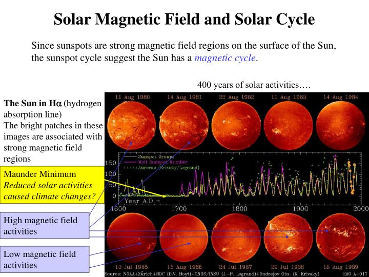 Solar Magnetic Field and Solar Cycle