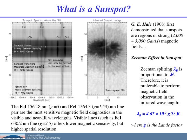 What is a Sunspot?