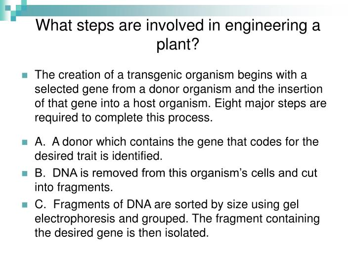 What steps are involved in engineering a plant?