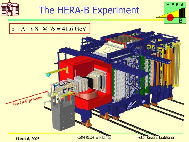 The HERA-B Experiment