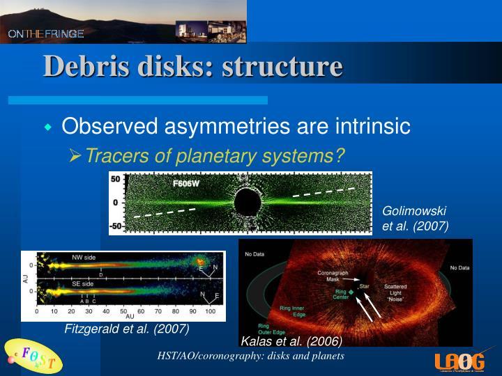 Debris disks: structure