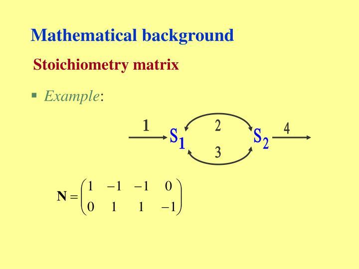 Stoichiometry matrix