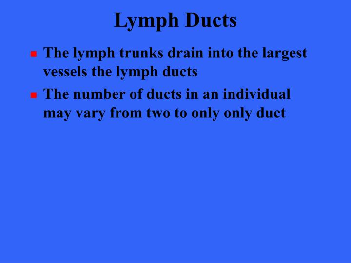 Lymph Ducts