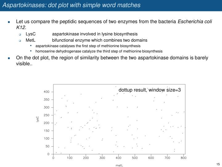 Aspartokinases: dot plot with simple word matches