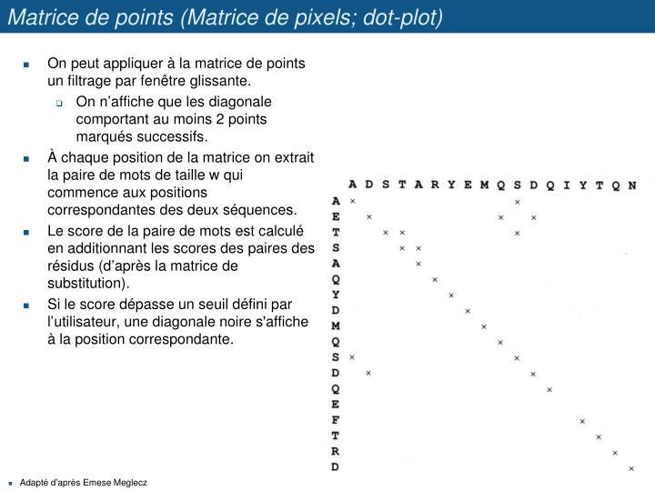 Matrice de points (Matrice de pixels; dot-plot)