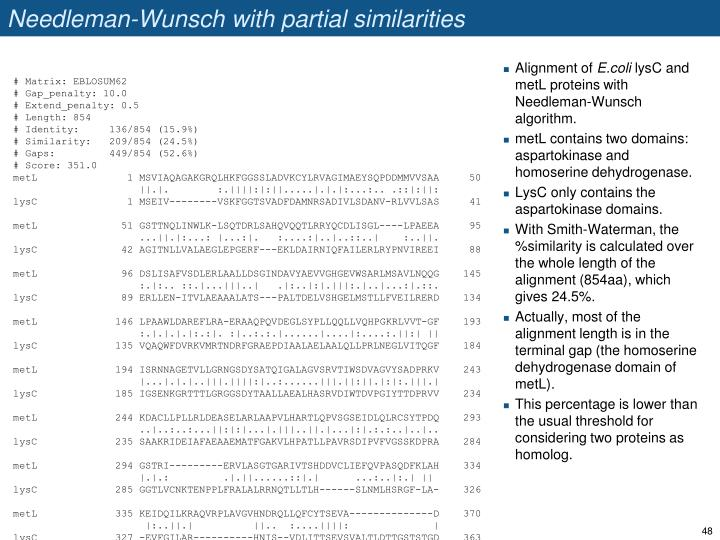 Needleman-Wunsch with partial similarities