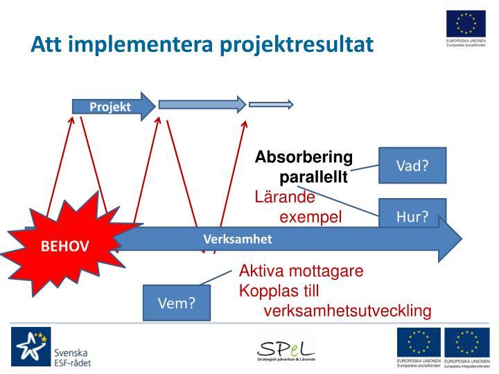 Att implementera projektresultat