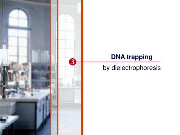DNA trapping