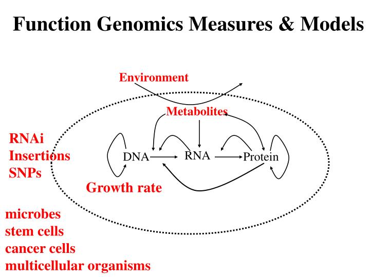 Function Genomics Measures & Models