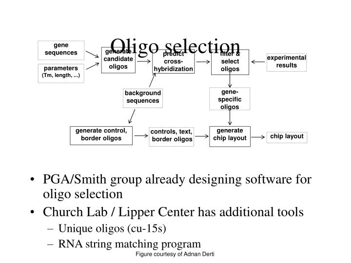 gene sequences