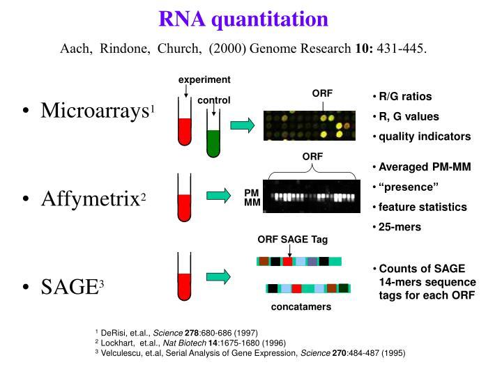 RNA quantitation