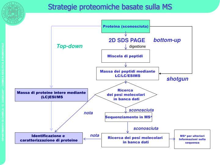 Strategie proteomiche basate sulla MS