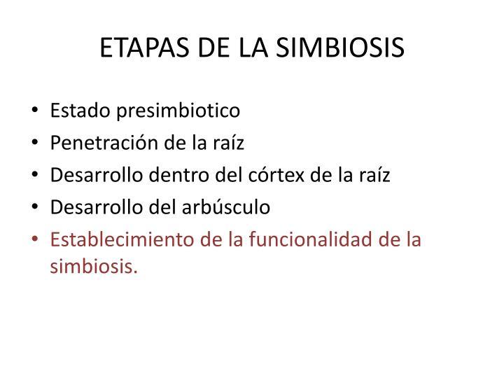 ETAPAS DE LA SIMBIOSIS