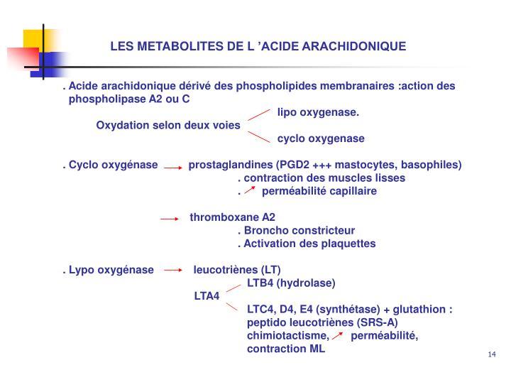 LES METABOLITES DE L'ACIDE ARACHIDONIQUE
