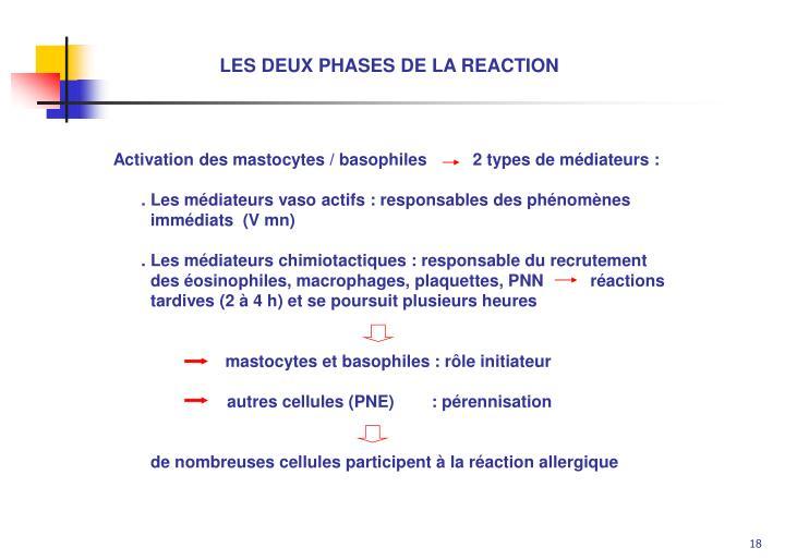 LES DEUX PHASES DE LA REACTION