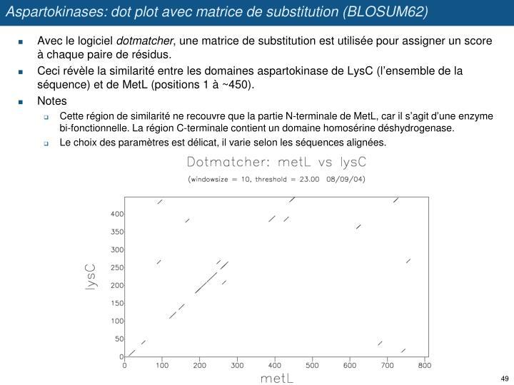 Aspartokinases: dot plot avec matrice de substitution (BLOSUM62)