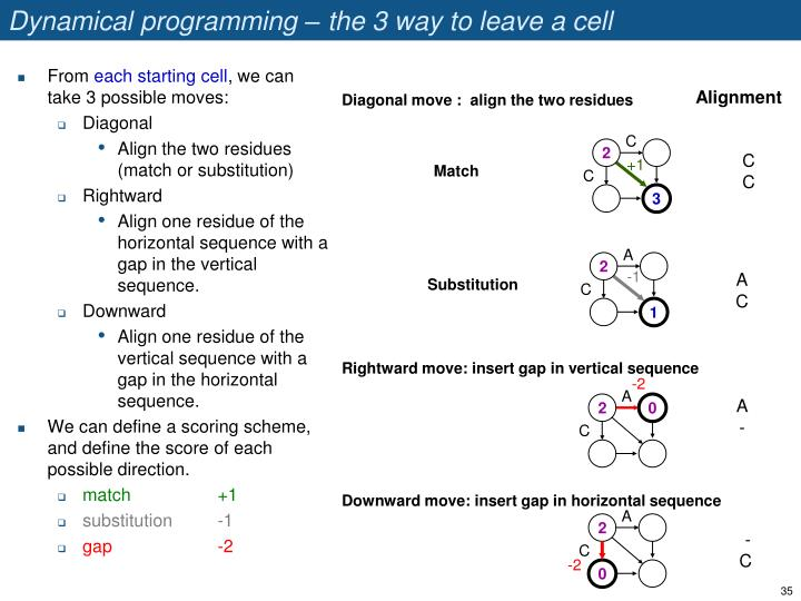 Dynamical programming – the 3 way to leave a cell