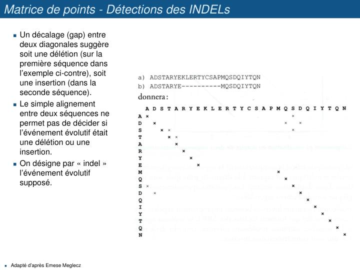 Matrice de points - Détections des INDELs
