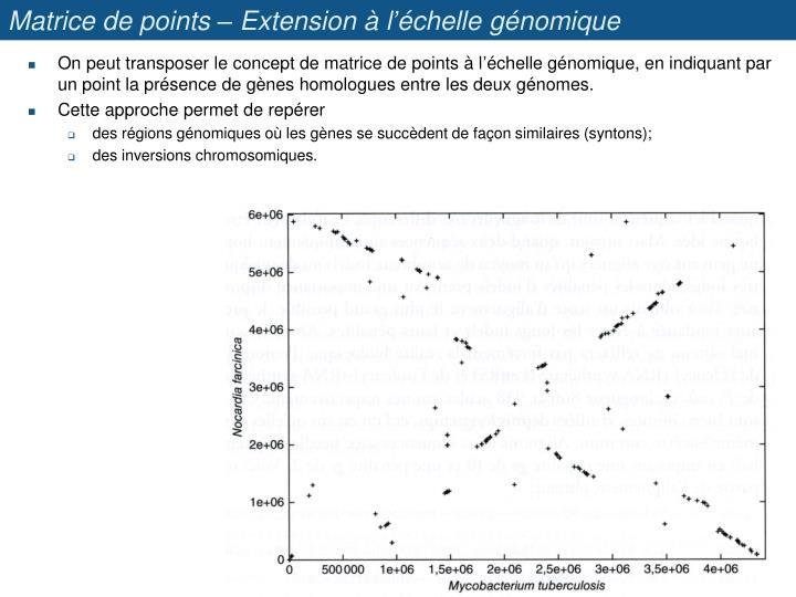 Matrice de points – Extension à l