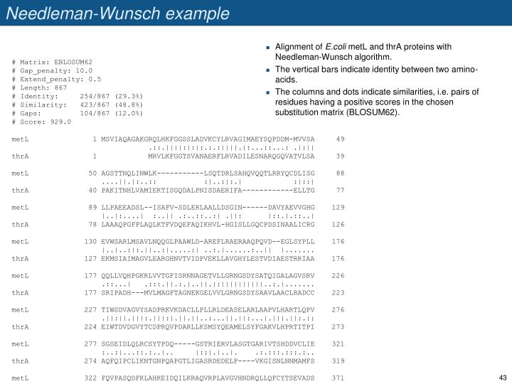 Needleman-Wunsch example