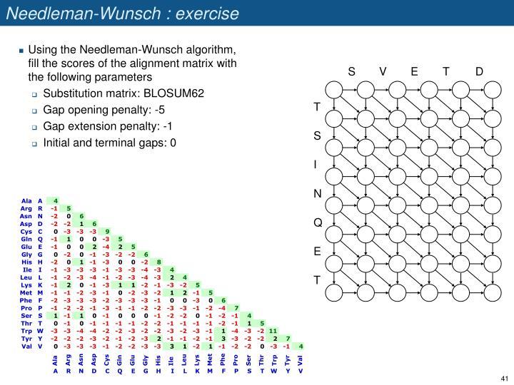 Needleman-Wunsch : exercise
