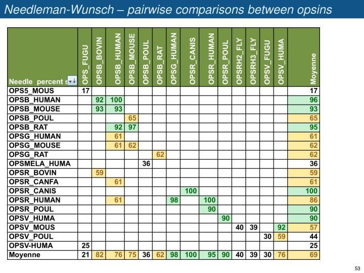 Needleman-Wunsch – pairwise comparisons between opsins