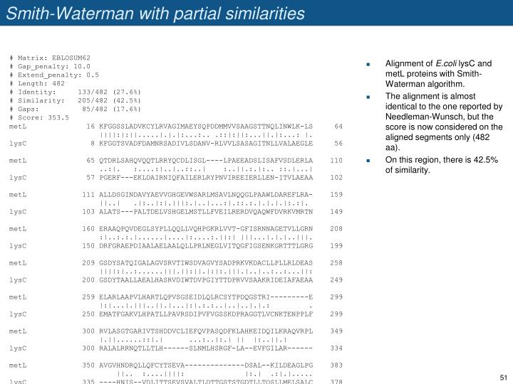 Smith-Waterman with partial similarities