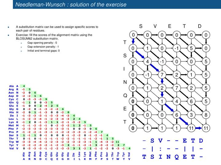 Needleman-Wunsch : solution of the exercise