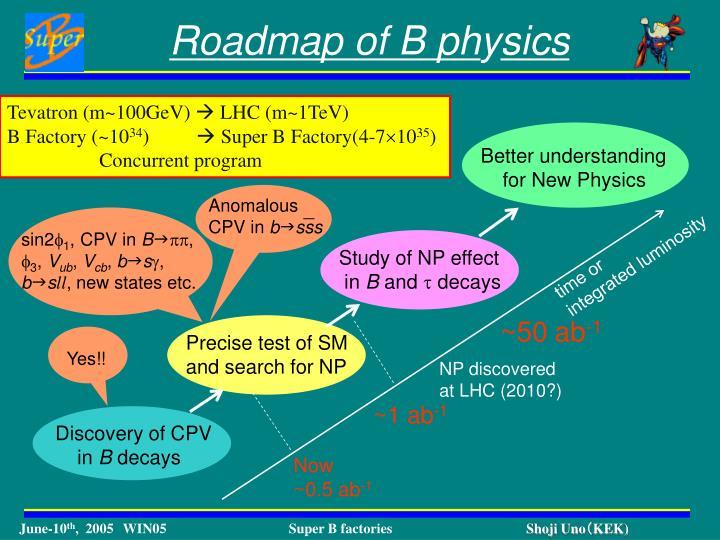 Roadmap of B ph