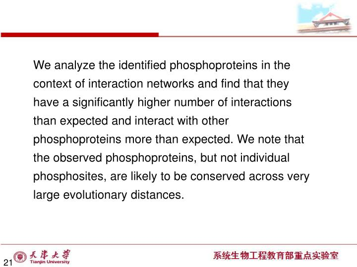We analyze the identified phosphoproteins in the context of interaction networks and find that they have a significantly higher number of interactions than expected and interact with other  phosphoproteins more than expected. We note that the observed phosphoproteins, but not individual phosphosites, are likely to be conserved across very large evolutionary distances.