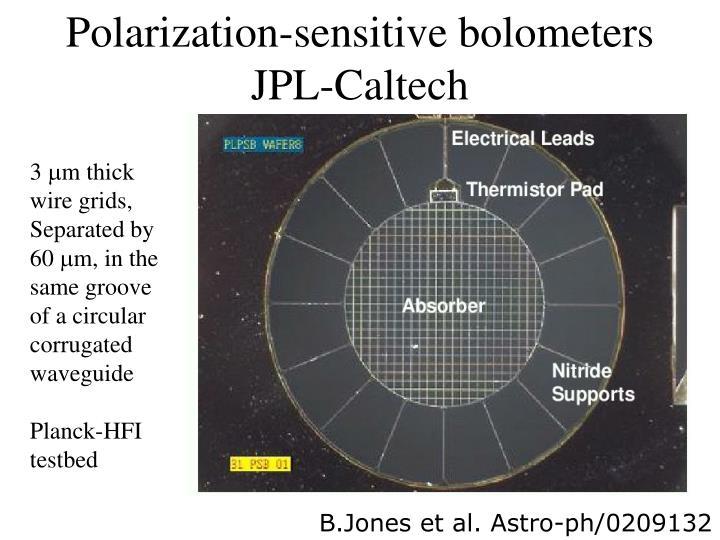 Polarization-sensitive bolometers