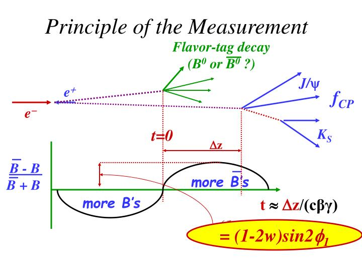 Principle of the Measurement
