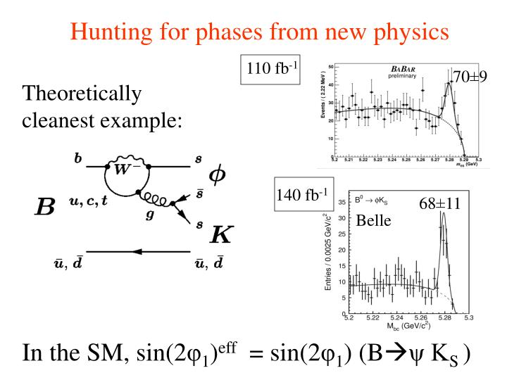 Hunting for phases from new physics
