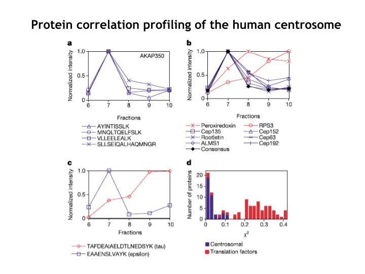 Protein correlation profiling of the human centrosome
