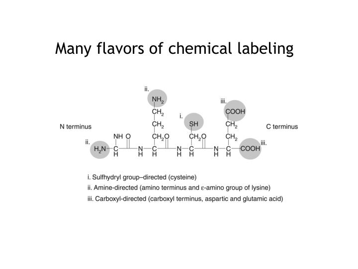 Many flavors of chemical labeling