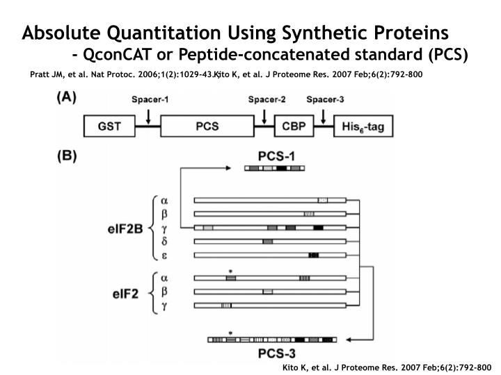 Absolute Quantitation Using Synthetic Proteins