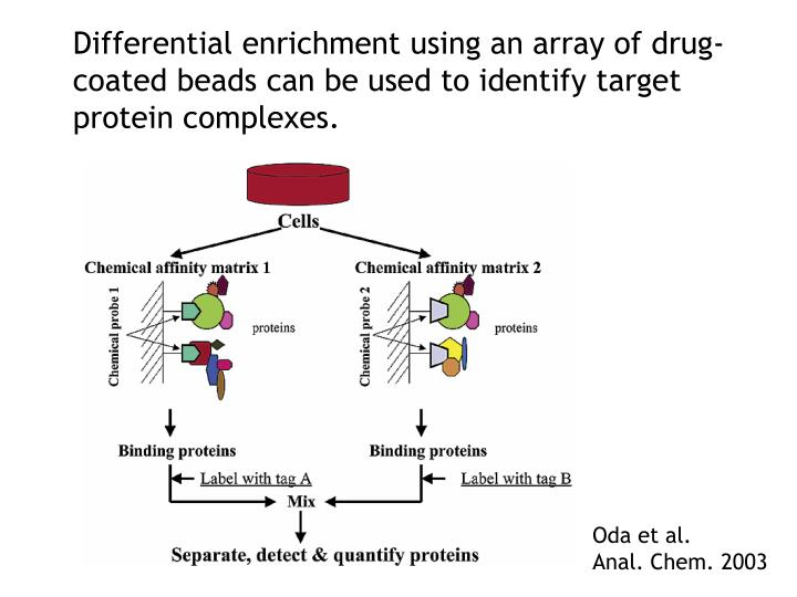 Differential enrichment using an array of drug-coated beads can be used to identify target protein complexes.
