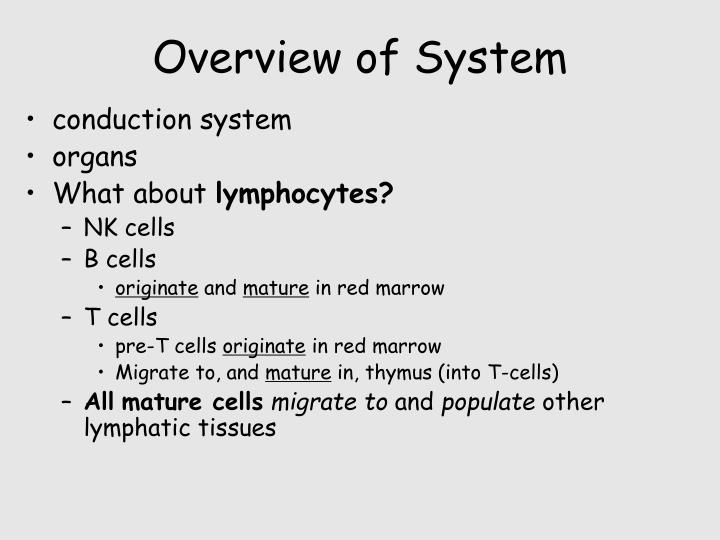 Overview of System