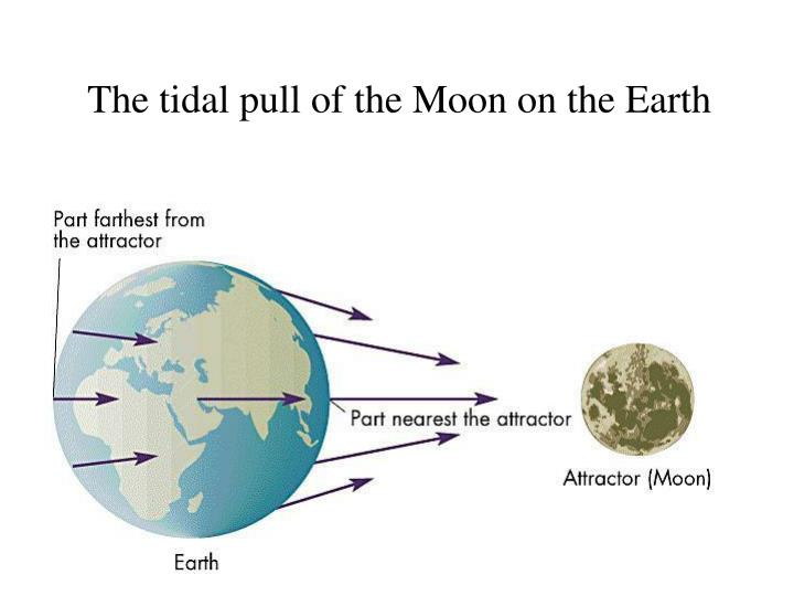 The tidal pull of the Moon on the Earth