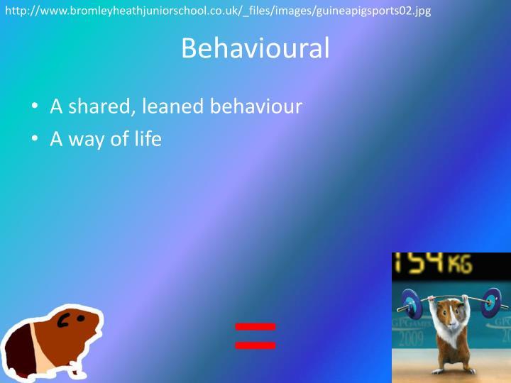 http://www.bromleyheathjuniorschool.co.uk/_files/images/guineapigsports02.jpg