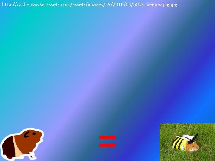 http://cache.gawkerassets.com/assets/images/39/2010/03/500x_beeneapig.jpg