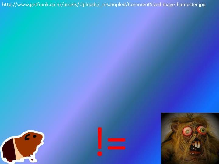 http://www.getfrank.co.nz/assets/Uploads/_resampled/CommentSizedImage-hampster.jpg