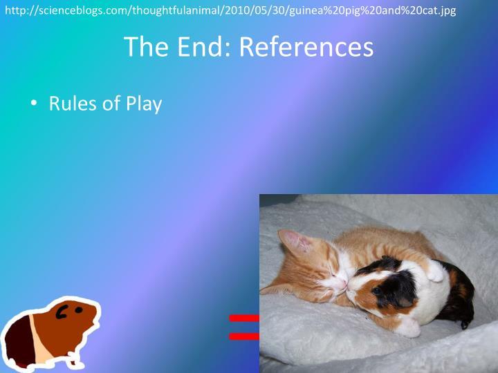 http://scienceblogs.com/thoughtfulanimal/2010/05/30/guinea%20pig%20and%20cat.jpg