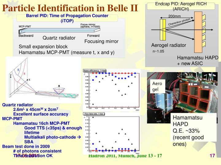 Particle Identification in Belle II