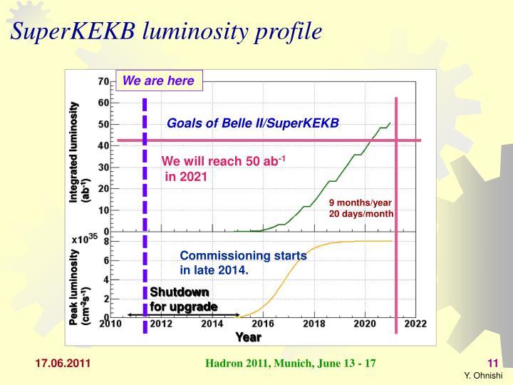 SuperKEKB luminosity profile