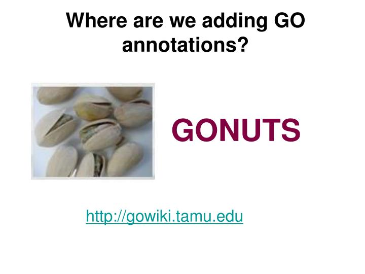 Where are we adding GO annotations?