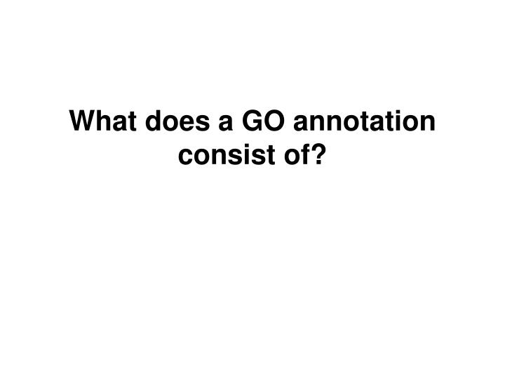 What does a GO annotation consist of?