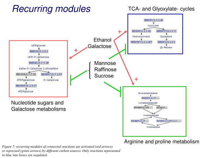 Recurring modules