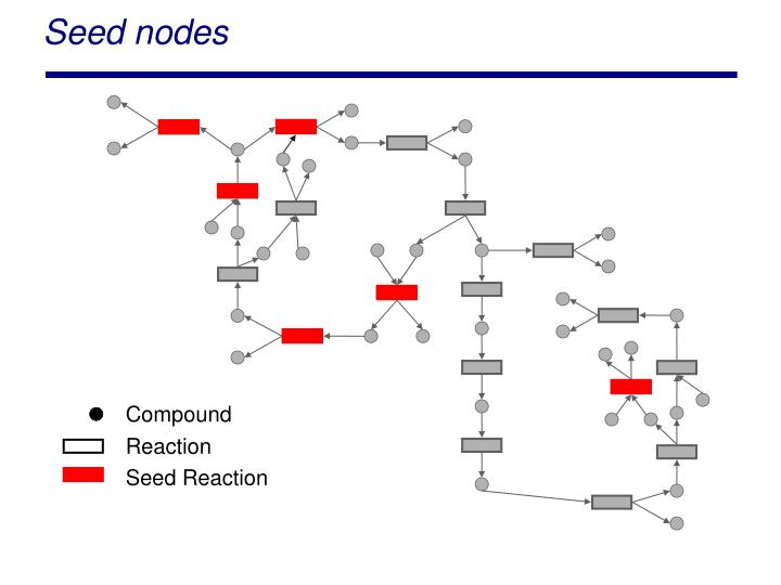 Seed nodes